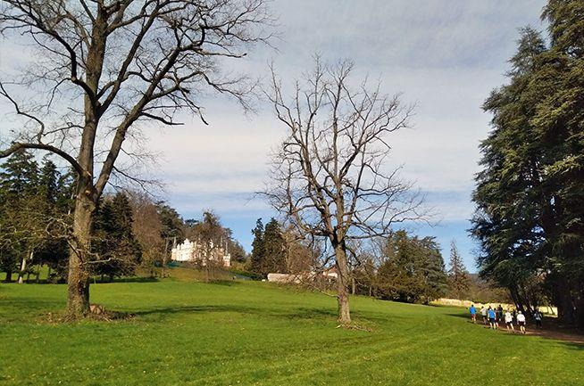 Trail des Salamandres 2019 - Parc Fraisse - Chateau