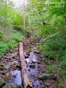 Photo du trail Gargomançois 6 Octobre 2019 - Parcours 19 km