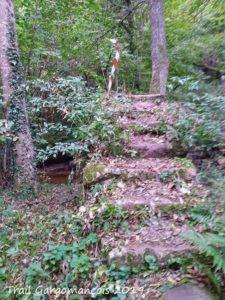 Photo du trail Gargomançois 6 Octobre 2019 - Parcours 19 km - Escalier