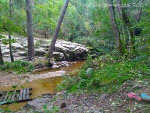Photo du trail Gargomançois 6 Octobre 2019 - Parcours 19 km - Palette sur la rivière à traverser