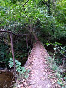 Photo du trail Gargomançois 6 Octobre 2019 - Parcours 19 km - Passerelle étroite
