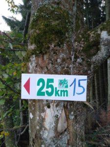Trail du Haut Pilat 2019