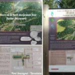 Balade enfant à la découverte des trésors du Pilat au Pont Souvignet ( Tarentaise )