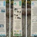 Balade enfant à la recherche des trésors du Pilat au Pont Souvignet à Tarentaise