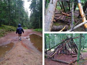 Cabane dans la forêt du grand bois au Bessat