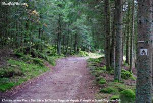 Chemin dans la Forêt vers la Pierre Carriole et la Pierre Pingaule depuis Prélager à Saint-Régis-du-Coin