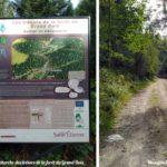 Sentier découverte du Pilat à la recherche des trésors du Grand Bois à Tarentaise (Pont Souvignet)