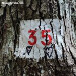 Numéro de parcelle indiquée sur un arbre le long de la balade