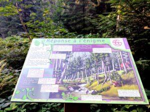 Réponse à l'énigme 3 du sentier de la devinette à Tarentaise dans le Grand Bois près du Pont Souvignet