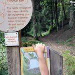 Réponse à l'énigme 1 de la balade enfant sur le sentier découverte du Pont Souvignet