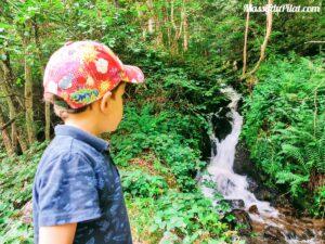 Petite cascade le long du Furan sur le chemin de la devinette au Pont Souvignet à Tarentaise