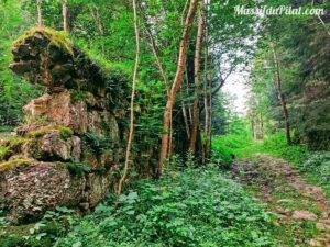 Chemin pavé de pierres dans le Pilat près du Pont Souvignet entre Tarentaise et Le Bessat