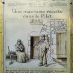 Mauvaise récolte dans le Pilat