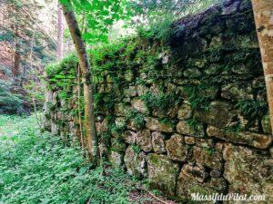 Mur en pierres dans le Grand Bois du Pilat entre Tarentaise et Le Bessat