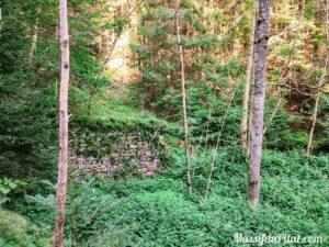 Ruine en pierres dans la forêt du Grand Bois